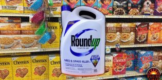 Monsanto Desperately Hoping to Hide New Food Safety Test Results