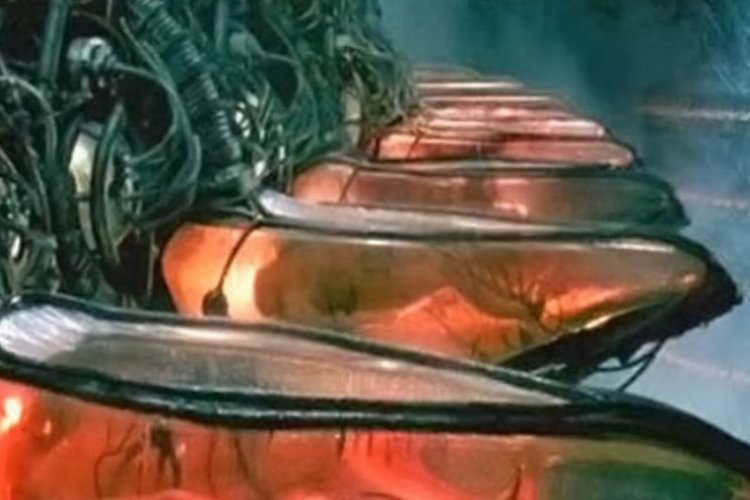 Scientists Say Babies Will Grow In Artificial Wombs Within Ten Years