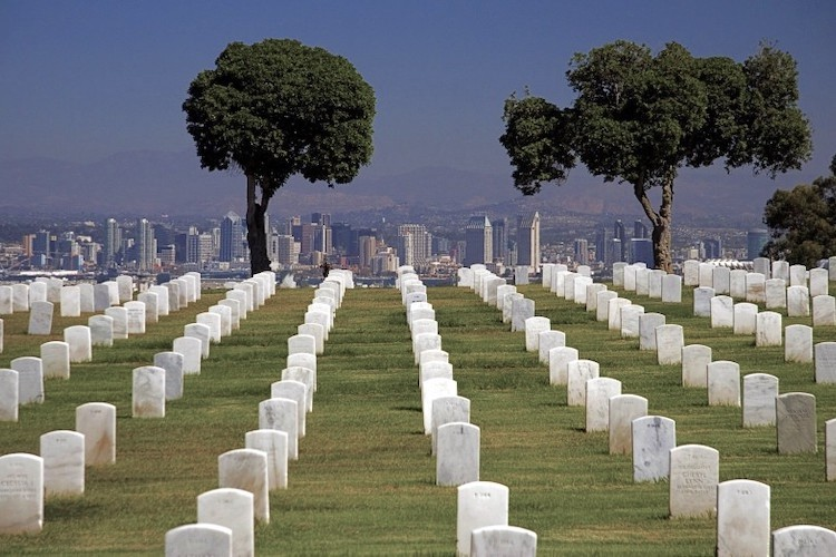 Shocker: Comparing Deaths From Medical Treatment, Vitamins and all US Wars