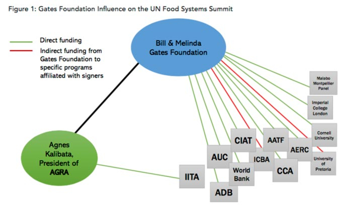 https://www.wakingtimes.com/wp-content/uploads/2020/08/un-food-systems-summit_jpg.jpg
