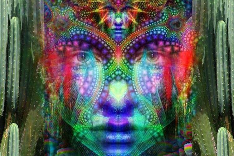 Psycho-Spiritual Immunity in the Era of Mass Psychosis Huachuma-stuff